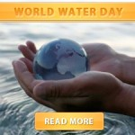 world water day cover