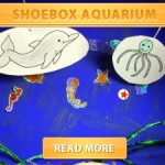 shoebox aquarium