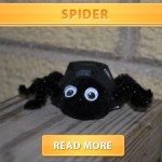 Egg carton spider cover final