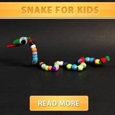 Snake for kids