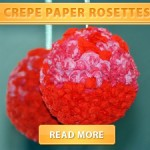 Crepe Paper Rosettes cover