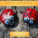 Rock Ladybugs