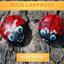 Rock Ladybugs cover