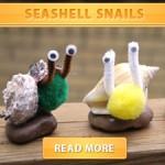 Seashell Snails