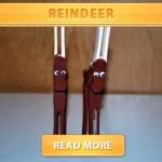 DIY Reindeer