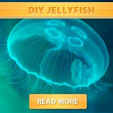 DIY Jellyfish cover