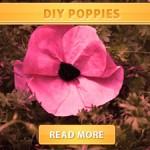 DIY Poppies