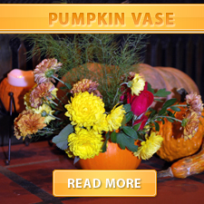 Pumpkin Vase Cover
