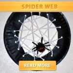 Spider Web Cover