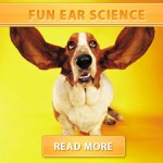 Fun Ear Science cover