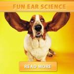 Fun Ear Science