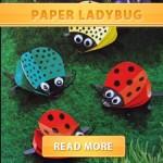 Ladybug cover