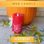 Web candle cover